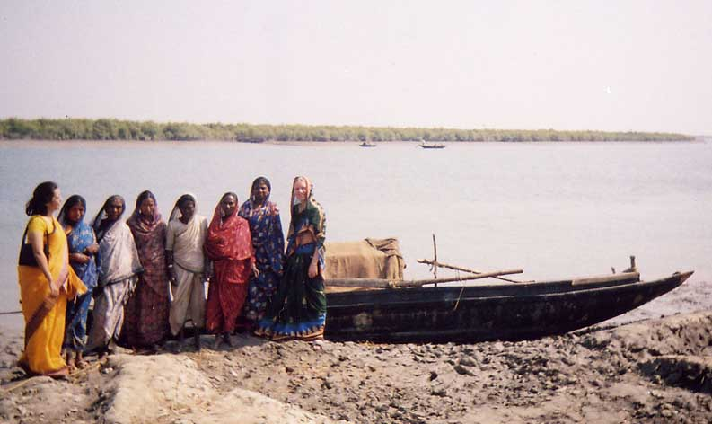 Tiger Widows dragging nets